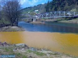 Sanctiuni mai aspre pentru poluarea mediului
