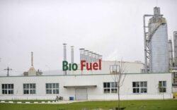 Biocombustibilii vor pamant