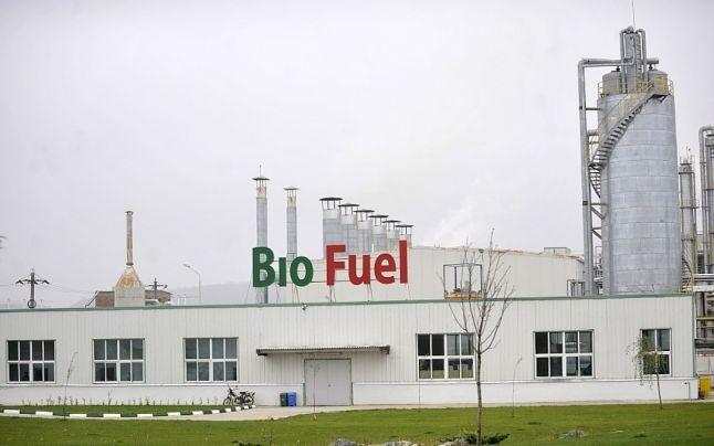 Biocombustibilii vor p?mânt