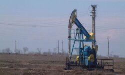 Canadienii foreaza dupa petrol la Satu Mare