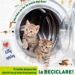 Patrula de reciclare: Cum scapam de aparatele si deseurile electrice si electronice?