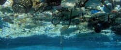 88% din suprafata oceanelor, contaminata de deseuri plastice