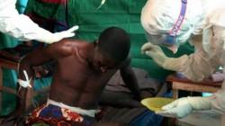 Ebola ameninta omenirea: S-ar putea propaga ca un incendiu de padure