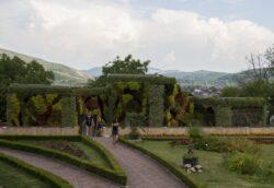 Gradini verticale, cerbi lopatari si lebede – noile atractii ale Gradinii Botanice Jibou