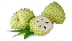 Sanatate: Graviola, fructul miraculos care lupta impotriva cancerului