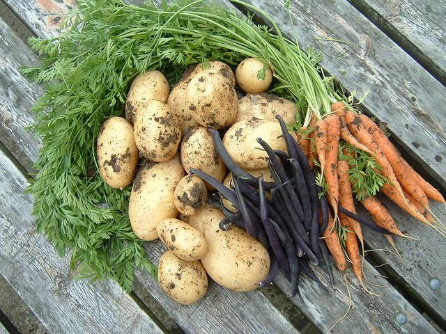 Rezidurile de pesticide din legume si fructe, verificate