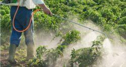 Usor cu pesticidele la culturile agricole!