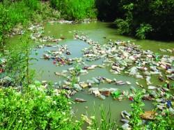 """Noi lasam ca 8 milioane de tone de materiale plastice sa fie aruncate in fiecare an in oceane"""