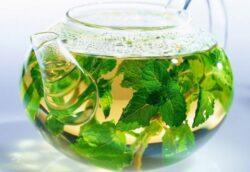 Beneficiile ceaiului de roinita, sursa ta zilnica de relaxare si fericire