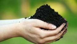 Cum sa evaluezi calitatea solului din gradina