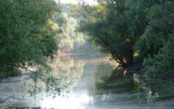 Turism ecologic la Dunare. Biciclete si barci pentru amatorii de calatorii