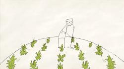 Povestea agriculturii si economiei verzi