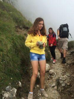 Intamplare de necrezut in Bucegi. Cativa turisti au rupt circa 30 de flori de colt, o planta superba si foarte rara, protejata de lege