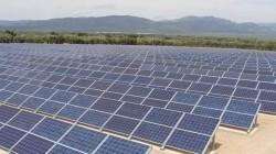 Cea mai profitabila afacere: parcurile fotovoltaice