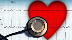 Prevenirea in mod natural a hipertensiunii. Plante pentru controlul eficient al tensiunii sanguine