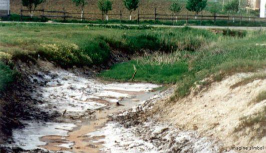 Ecologi?tii bat alarma: Râurile mici sunt pe cale de dispari?ie
