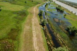 Renaturarea luncii Dunarii, beneficii pentru oameni si natura - un nou proiect lansat de WWF-Romania