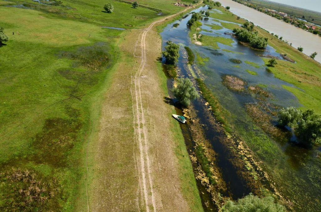 Renaturarea luncii Dun?rii, beneficii pentru oameni ?i natur? - un nou proiect lansat de WWF-România