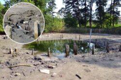 Pentru a salva  lacul cu nuferi din Baile 1 Mai, autoritatile vor sa limiteze furnizarea apei termale