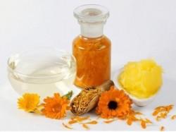 """Factorul """"Hr"""" - elementul magic din florile de galbenele. Inamicul numarul 1 al cancerului!"""