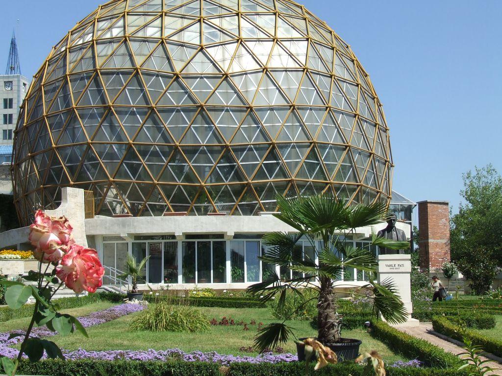 Cercet?torii români au descoperit planta care ar putea invinge cancerul