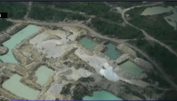 P?durile amazoniene, în pericol din cauza minelor ilegale de aur