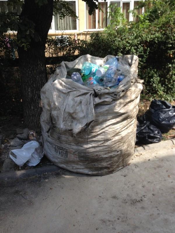 De la utilizarea petrolului, până la poluarea oceanelor: Cinci lucruri suprinzătoare despre impactul industriei materialelor plastice asupra mediului