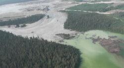 Cine plateste pentru dezastrul produs de ruperea iazului de decantare din Canada?