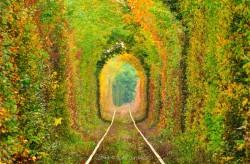 """""""Tunelul Iubirii"""" – ,,Tunelul Verde"""", Din Caras Severin, Pe Lista Comorilor Ascunse Din Uniunea Europeana"""