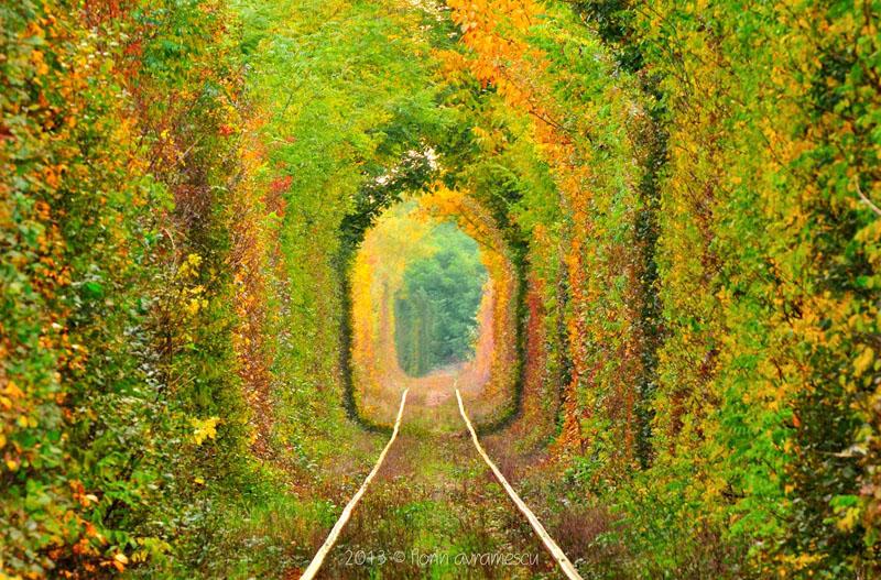 """""""Tunelul Iubirii"""" – ,,Tunelul Verde"""", Din Cara? Severin, Pe Lista Comorilor Ascunse Din Uniunea European?"""