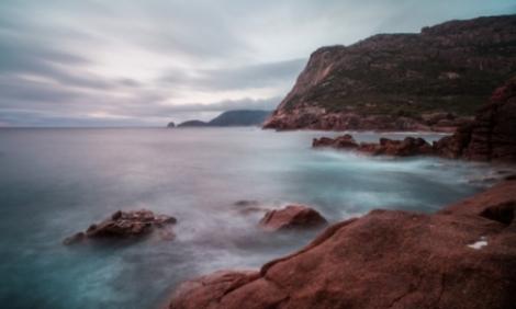 Forme de via?? stranii descoperite în ocean: creaturile nu seam?n? cu nimic altceva din lumea vie