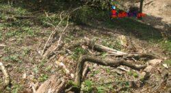 Primele urmari ale dezastrului ecologic din Cheile Garlistei: tone de pamant adus de ape peste garlisteni
