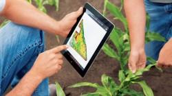 Finantare nerambursabila pentru trecerea la agricultura ecologică