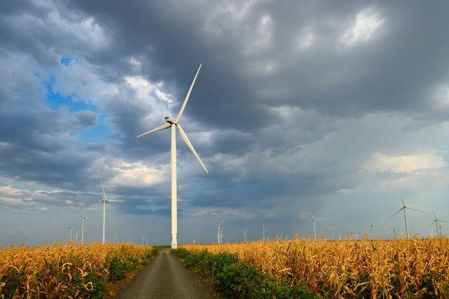 Cel mai mare poduc?tor de energie din Cehia vrea s? se extind? în Polonia ?i Slovacia, în timp ce în România renun?? la parcul eolian