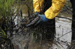 OMV Petrom a provocat cele mai multe incidente de poluare a mediului