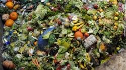 SUA: Locuitorii orasului Seatlle, amendati daca arunca resturi alimentare la gunoi