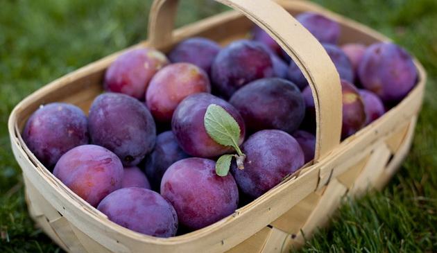 Prunele - beneficii uimitoare pentru organism