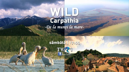 Episodul 2 al seriei Wild Carpathia la TVR