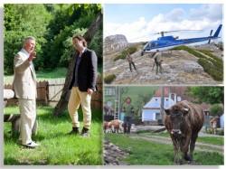 TVR difuzeaza celebrul documentar despre Romania – Wild Carpathia