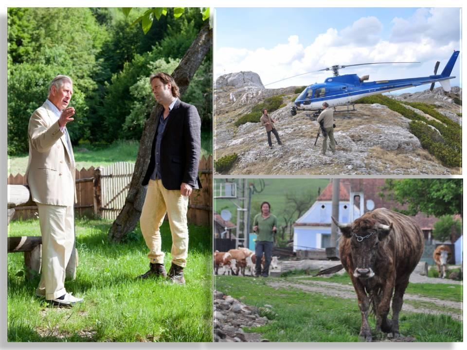 TVR difuzeaz? celebrul documentar despre România – Wild Carpathia