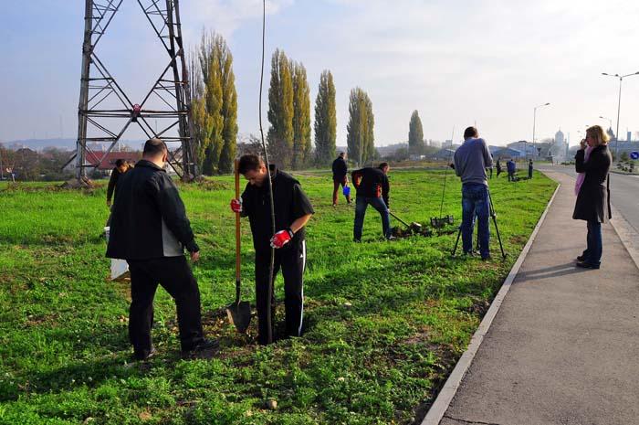 Copaci pentru tot ora?ul: În aceast? toamn?, în Oradea vor fi planta?i peste 800 de puie?i, fiecare cu o garan?ie de doi ani