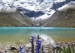 Suprafata ghetarilor din Peru s-a redus cu aproximativ 40% in ultimii 40 de ani (raport)