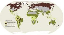 Raportul Planeta Vie 2014: Avem mai putin de jumatate dintre pasarile, mamiferele si amfibienii de acum 40 de ani