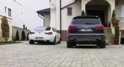 "Rovana Plumb, ""parintele"" Timbrului de Mediu, circula cu masina inmatriculata pe Bulgaria"
