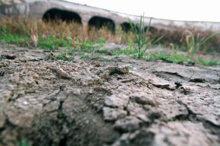 Schimb?rile climatice, cauza celei mai grave secete din istoria Californiei