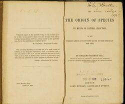 155 de ani de la publicarea lucrarii ''Originea Speciilor'', a naturalistului Charles Robert Darwin