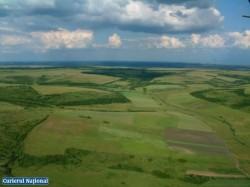 Retrocedare ilegala de peste 5000ha de padure in Judetul Buzau