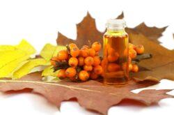 Sanatate: Uleiul de catina, folosit in scopuri terapeutice si estetice