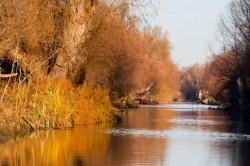 Proiect: Mecanism unic de control pentru combaterea braconajului in Rezervatia Delta Dunarii