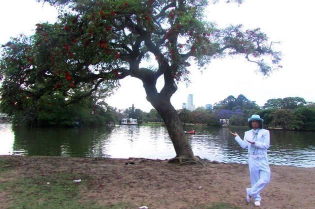 Cine este barbatul care si-a unit destinul pentru a doua oara cu un copac din Bogota.